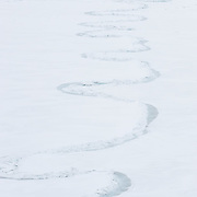 An meandering lead snakes through the ice of the Beaufort Sea, Alaska