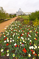 Lewis Ginter Botanical Garden, Richmond, Virginia USA