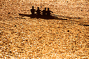 Silhouette of men's fours rowing team in action.