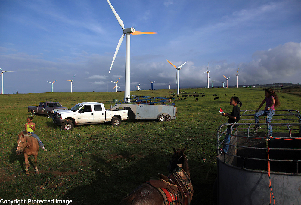 Kamehana Tachera (left) rides her horse on a windmill farm/grazing field  in North Kohala, Hawaii while her sister, Nahe and a friend climb on one of the horse trailers after the girls helped the Ho'opai family with their annual branding. Small-time ranchers, Kimo and Lehua Ho'opai have an agreement that allows them to graze their cattle amongst the windmills in North Kohala.  The sight of horses and cows amidst the modern windmills is striking, perhaps suggesting that modern technology and traditional ranching techniques can coeexist.