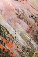 Paredes policromáticas del Cañón de Yellowstone, Yellowstone NP, Wyoming (Estados Unidos)