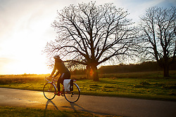© Licensed to London News Pictures. 13/01/2016. London, UK. People cycling in Richmond Park in London at sunrise following one of the coldest nights in a year as temperatures in the capital drop as low as -1C on Wednesday, 13 January 2016. Photo credit: Tolga Akmen/LNP