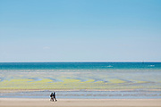 Walkers and seaweed forming geometric shapes on sandy beach at St Aubin's Bay, Jersey, Channel Isles