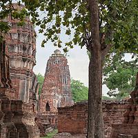 Wat Mahathat in Ayutthaya.