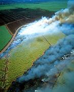 Burning sugar cane field, Maui, Hawaii