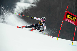 O BRIEN Nina of United States competes during the 6th Ladies'  GiantSlalom at 55th Golden Fox - Maribor of Audi FIS Ski World Cup 2018/19, on February 1, 2019 in Pohorje, Maribor, Slovenia. Photo by Vid Ponikvar / Sportida