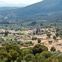 Messene - Peloponnese - Greece