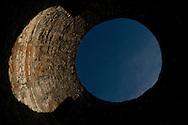 Vestibule, in the Roman Palace of Diocletian, Split, Croatia