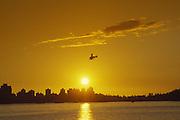 Seaplane, sunset, Vancouver, British Columbia, Canada<br />
