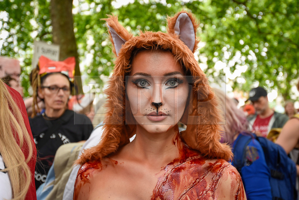 """© Licensed to London News Pictures. 29/05/2017. London UK. Model Daryna Milgevska in fox costume and body paint joins demonstrators in an """"Anti-Hunting March"""" in central London, marching from Cavendish Square to outside Downing Street.  Protesters are demanding that the ban on fox hunting remains, contrary to reported comments by Theresa May, Prime Minister, that the 2004 Hunting Act could be repealed after the General Election.<br />  Photo credit : Stephen Chung/LNP"""