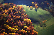 Aerial, Autumn Trees, Laurel Preserve,  Chester Co., PA Aerial, Southeast Pennsylvania Aerial Photograph Pennsylvania