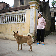 Color film photograph of an elderly woman watching commotion on the street with a dog beside her in Tho Ha Village, a craft village specialized in making rice paper cakes with a history of pottery ware production, Hanoi outskirts, Vietnam, Southeast Asia