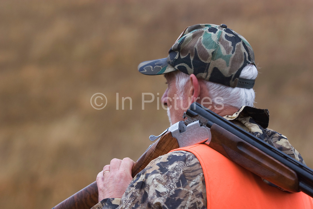 With his shotgun broken over his shoulder, experienced hunter Timmy Stein out on the North Dakota prarie grasslands west of Minot, shooting upland game birds such as grouse (also known in this area as 'chickens'). Timmy has been shooting for most of his life and puts considerable efforts into his hunting, efforts which reward him with wild game meats, none of which is wasted. This cold wet morning is not ideal for this type of shooting as the birds tend to sit tight in the undergrowth. The hunters on occasion nearly tread on the birds before they will take flight.