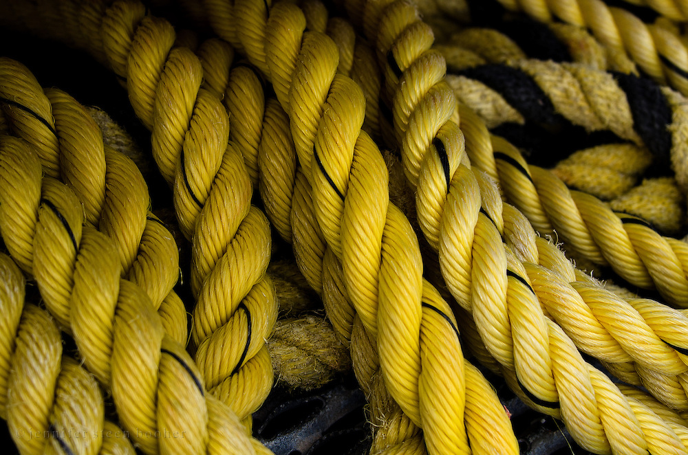 Coils of marine rope on a dock, Bar Harbor, Maine