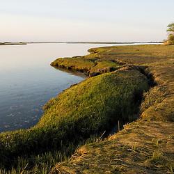Salt marsh in spring.  Strawberry Hill Preserve in Ipswich, Massachusetts.  Eagle Hill River.  Tidal River.