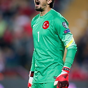 Turkey's goalkeeper Tolga Zengin during their UEFA Euro 2016 qualification Group A soccer match Turkey betwen Czech Republic at Sukru Saracoglu stadium in Istanbul October 10, 2014. Photo by Aykut AKICI/TURKPIX