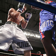 """Luis Olivares (silver) fights against Jeffery Ramos during the """"Boxeo Telemundo"""" boxing match at the Kissimmee Civic Center on Friday, March 14, 2014 in Kissimmme, Florida. (Photo/Alex Menendez)"""