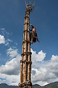 Dani tribe lookout tower<br /> Budaya village<br /> Suroba<br /> Trikora Mountains<br /> West Papua<br /> Indonesia