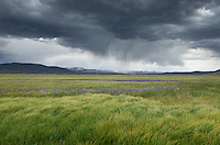 Approaching storm, Sawtooth Mountians Idaho