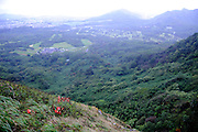 View from the Nuuanu Pali Lookout. Situated on a Koolau mountain cliff, the Nuuanu Pali Lookout is at the site of the 1795 Battle of Nuuanu, where Kamehameha the Great conquered the island of Oahu, leading to the unification of the Hawaiian islands. Oahu, Hawaii