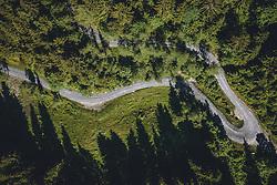 THEMENBILD - Forstweg im Wald, aufgenommen am 01. Juni 2020 in Kaprun, Österreich // Forest road, Kaprun, Austria on 2020/06/01. EXPA Pictures © 2020, PhotoCredit: EXPA/ JFK