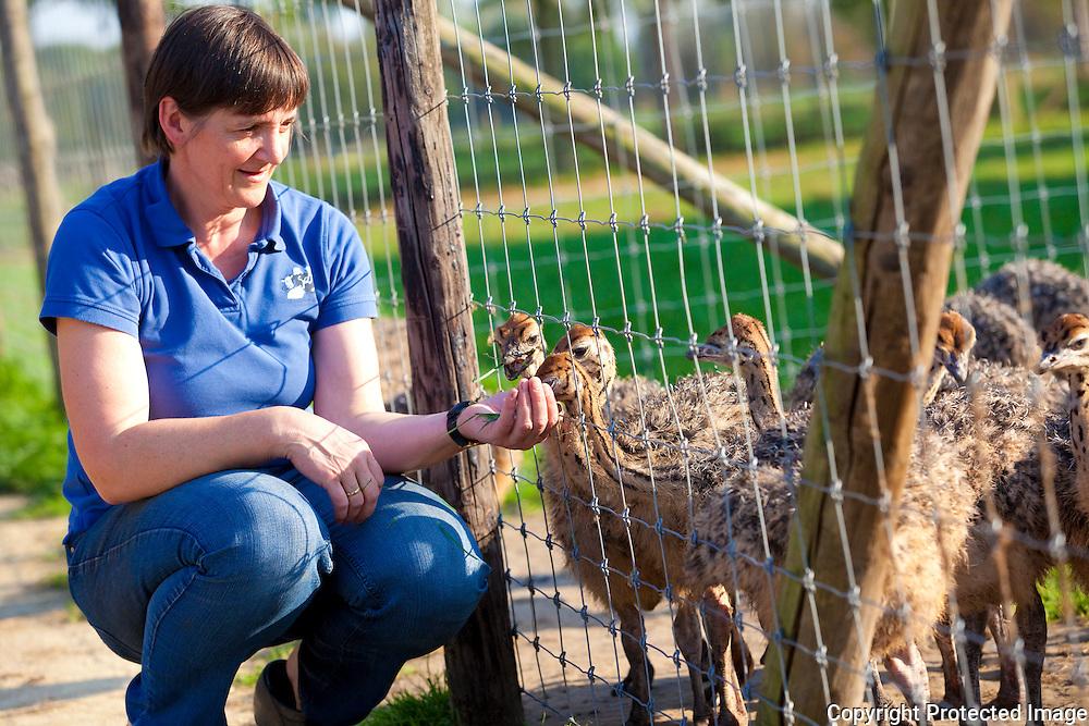 365811-Kinderboerderij t'Struisvogelnest-Lief Van Dessel en Ludo Gielis-Zuut 18 Lier