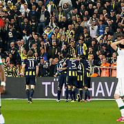 Fenerbahce's players celebrate goal during their Turkish superleague soccer match Fenerbahce between Bursaspor at the Sukru Saracaoglu stadium in Istanbul Turkey on Sunday 10 March 2013. Photo by Aykut AKICI/TURKPIX