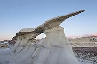 Wing sandstone formations, Bisti Badlands, Bisti/De-Na-Zin Wilderness, New Mexico