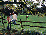 A mother has a talk with her daughter while relaxing in a field with horses