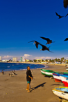 Fishing boats on the beach, Mazatlan, Sinaloa, Mexico