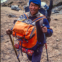 A trekking Sherpa carries a hikers pack during a trek around Annapurna in Nepal.