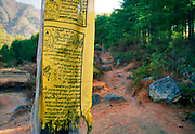 Buddhist prayer flag on mountain path to Tak Tsang Monaster, Bhutan