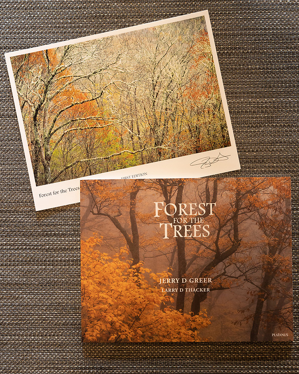 Forest for the Trees book with Print #3