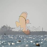 2021-02-24 Rif Raf Beach, Eilat