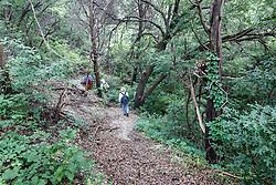 Hikers on Piedmont Ridge, Great Trinity Forest, Dallas, Texas, USA