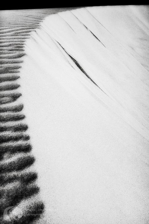 Global Edge. Siuslaw National Forest sand dunes near Florence, Oregon.