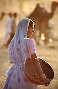 Woman collecting dung for fuel, Pushkar Fair, Rajasthan, India