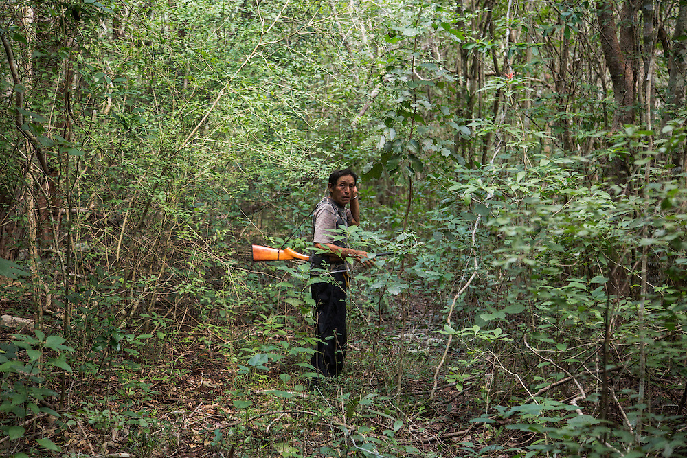 Hunting in Yucatan.<br /> <br /> October 8, 2015.