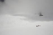Distant climbers on the Breithornplateau, above Zermatt, Switzerland