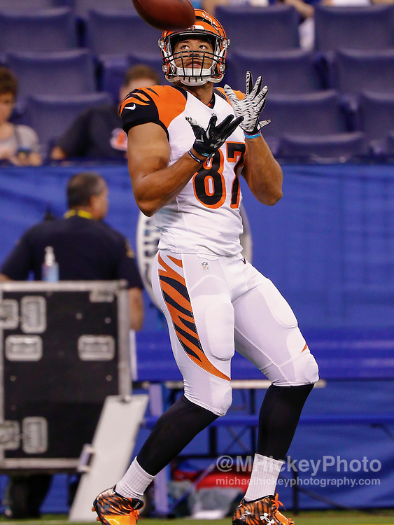 INDIANAPOLIS, IN - SEPTEMBER 3: C.J. Uzomah #87 of the Cincinnati Bengals is seen before the game against the Indianapolis Colts at Lucas Oil Stadium on September 3, 2015 in Indianapolis, Indiana. (Photo by Michael Hickey/Getty Images) *** Local Caption *** C.J. Uzomah