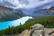 Peyto Lake, Banff National Park, Alberta, Canada