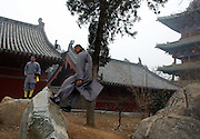 """The monks of Shaolin Temple (literally means """"temple in the woods of Shaoshi Mountain"""") are trained in the martial art of Kung Fu.<br /> <br /> Myth and reality blur with Shaolin and its kung fu. Some consider Bodhidharma as the founder of Shaolin kung fu but references to warrior monks existed before this period.<br /> <br /> Bodhidharma was the founder of Dhyana (Chan) Buddhism and this coincided with the start of the spiritual martial art of Shaolin kung fu."""