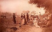 Sweet potatoe planting on Cassina Point Plantation on Edisto Island, South Carolina during Union occupation in April 8,1862.