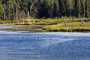 Waterway in Voyageurs  National Park in the Border Lakes region of northern Minnesota and northwestern Ontario. This forested, lake-filled landscape covers 5.1 million acres surrounding Quetico Provincial Park, Voyageurs National Park and the Boundary Waters Canoe Area Wilderness. This region is part of the Superior National Forest in northeastern Minnesota.