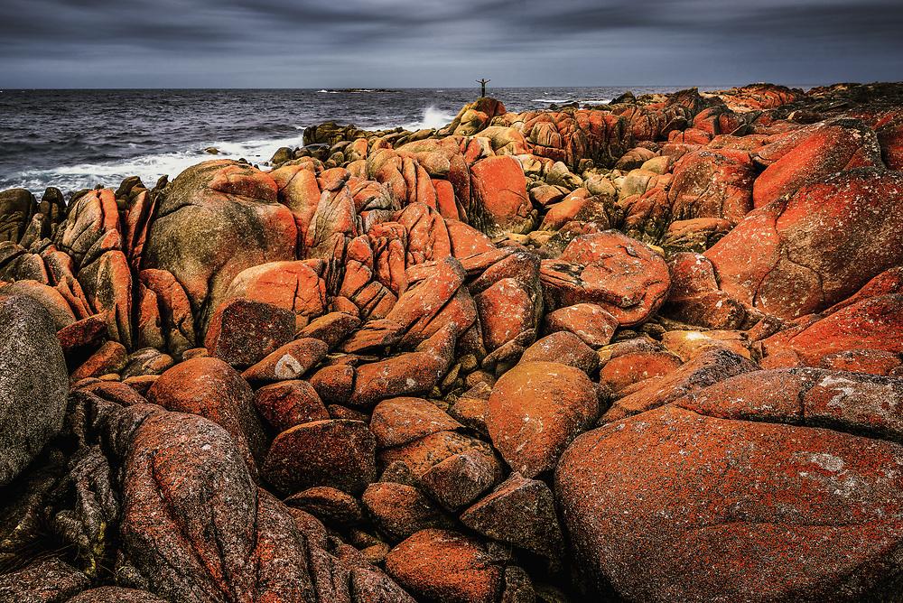 Mount William National Park at Bay of Fires, Tasmania
