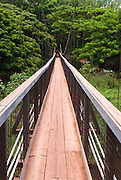 A swinging bridge on the island of Kauai, Hawaii.