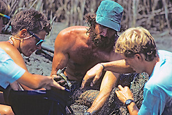 Earthwatcher, Tony Tucker and Tim Removing Terrapin Turtles From Nets