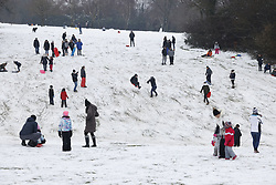 © Licensed to London News Pictures. 24/01/2021. Epsom, UK. People enjoy the snowy conditions on Epsom Downs in Surrey. A band of snow is crossing the south east this morning as temperature remain just above freezing. Photo credit: Peter Macdiarmid/LNP