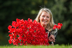 © Licensed to London News Pictures. 17/09/2015. Harrogate, UK. Picture shows Fiona Fisk with the Harrogate Gem sweet pea that has been bred to celebrate the 40th Harrogate Autumn Flower show. Photo credit: Andrew McCaren/LNP