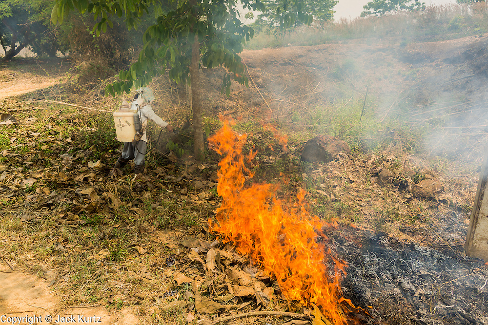 """23 APRIL 2014 - CHIANG SAEN, CHIANG RAI, THAILAND: A Thai farmer watches a fire she set on her land burn out. Many farmers in Thailand and neighboring Laos still practice """"slash and burn"""" agriculture. The Thai government is trying to stop the burning but farmers are reluctant to give up burning. Chiang Rai province in northern Thailand is facing a drought this year. The 2014 drought has been brought on by lower than normal dry season rains. At the same time, closing dams in Yunnan province of China has caused the level of the Mekong River to drop suddenly exposing rocks and sandbars in the normally navigable Mekong River. Changes in the Mekong's levels means commercial shipping can't progress past Chiang Saen. Dozens of ships are tied up in the port area along the city's waterfront.               PHOTO BY JACK KURTZ"""